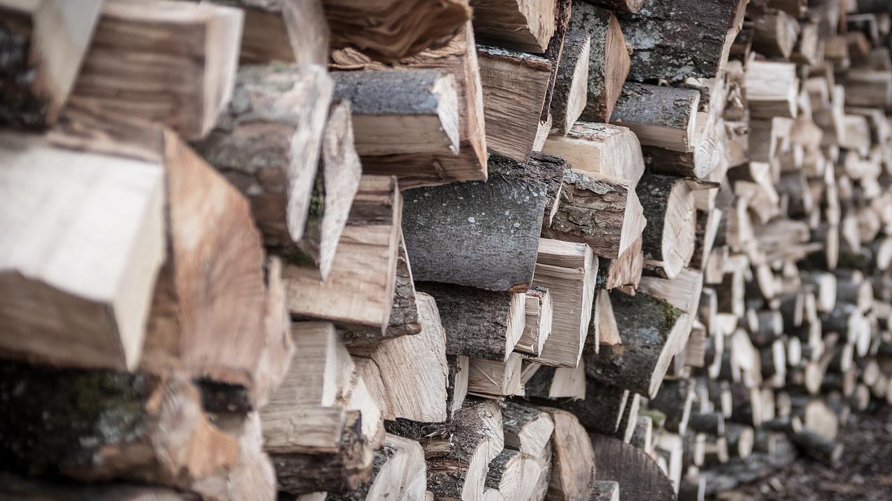 Wer einen Kamin hat, braucht auch Brennholz.