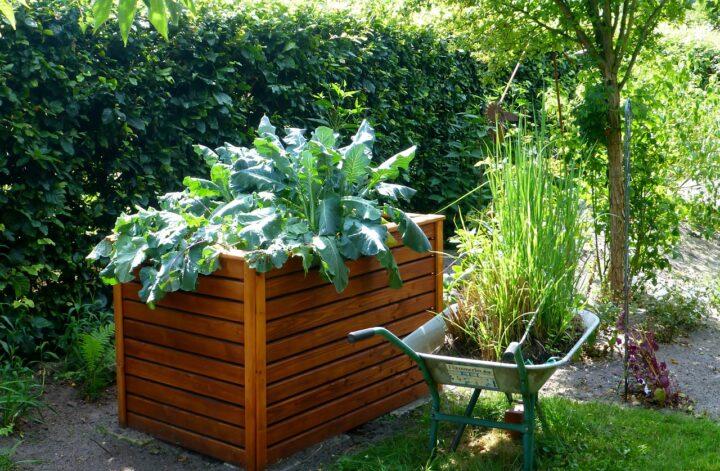 Hochbeet für Gartenkräuter- Funktionen und Vorteile